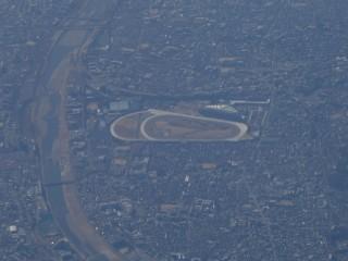 阪神競馬場写真