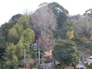 碇山・熊野神社鳥居写真