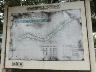 大野川筋ランニングコース写真