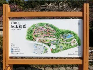 池上梅園案内図写真