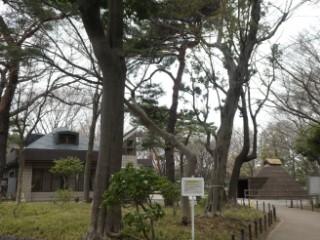 塚山公園・公園事務所、下高井戸塚山遺跡復元竪穴住居写真