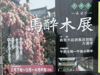 大通寺・馬酔木展ポスター写真