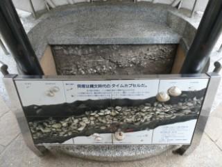 品川区立大森貝塚遺跡庭園・貝塚展示ブース写真