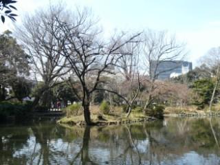 有栖川記念公園日本庭園写真