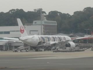 JAL嵐ジェット写真