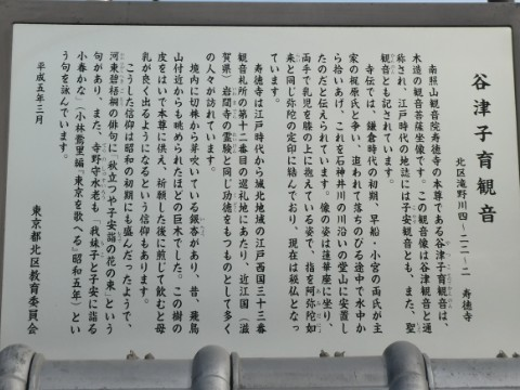 谷津子育観音写真