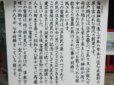 椙森神社・富塚碑解説板写真