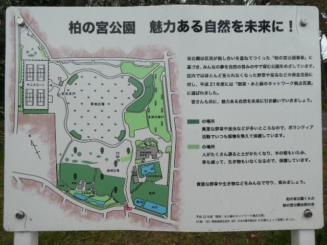 柏の宮公園解説板写真
