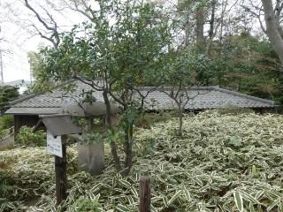 柏の宮公園・林丘亭写真