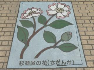 杉並区花・サザンカタイル写真