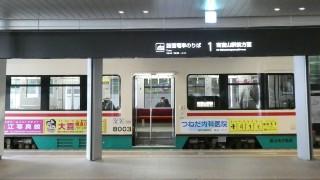 富山地方鉄道・デ8000形車両