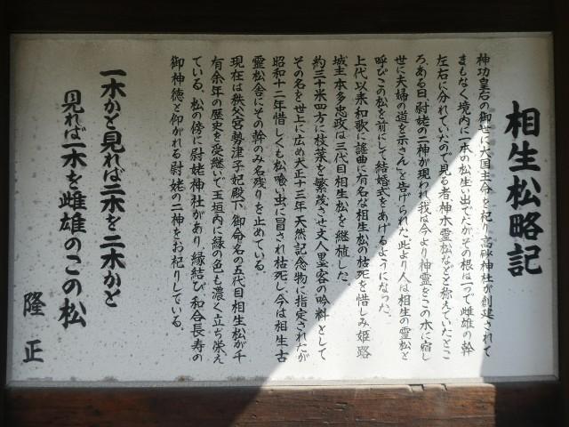 高砂神社・相生松解説板写真