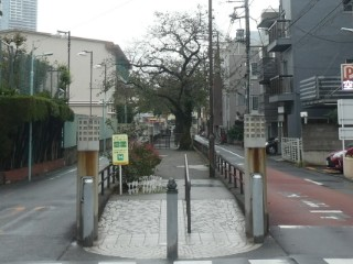 立会川緑道写真