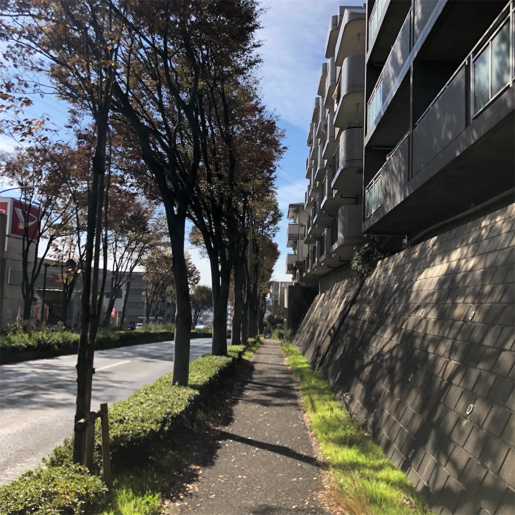 f:id:yuakuma:20181117141640j:image