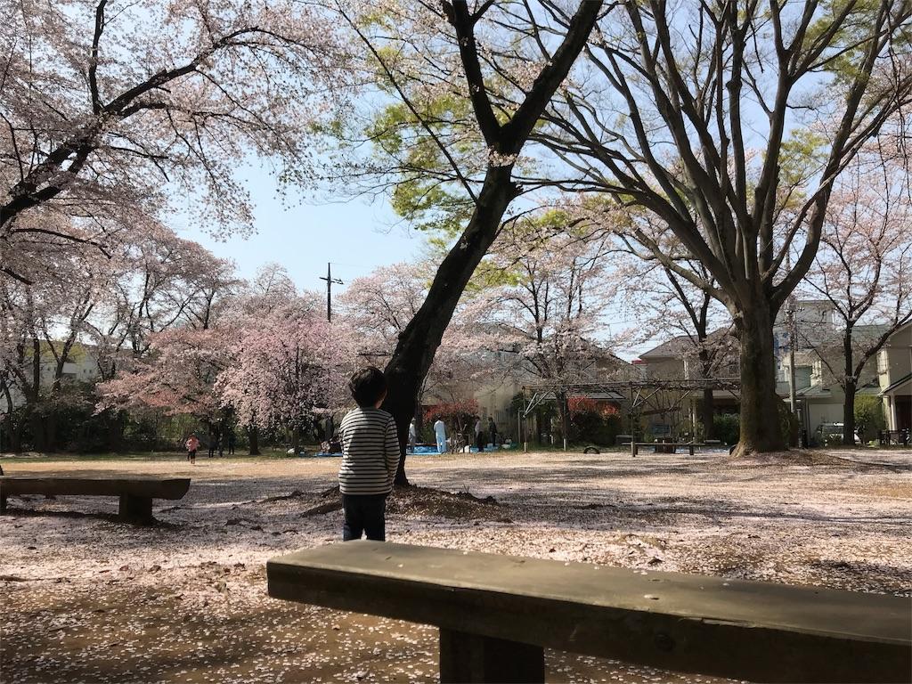 f:id:yuasayo1013:20180402112617j:image