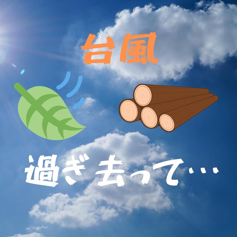 f:id:yubayashi88:20191014093958p:plain