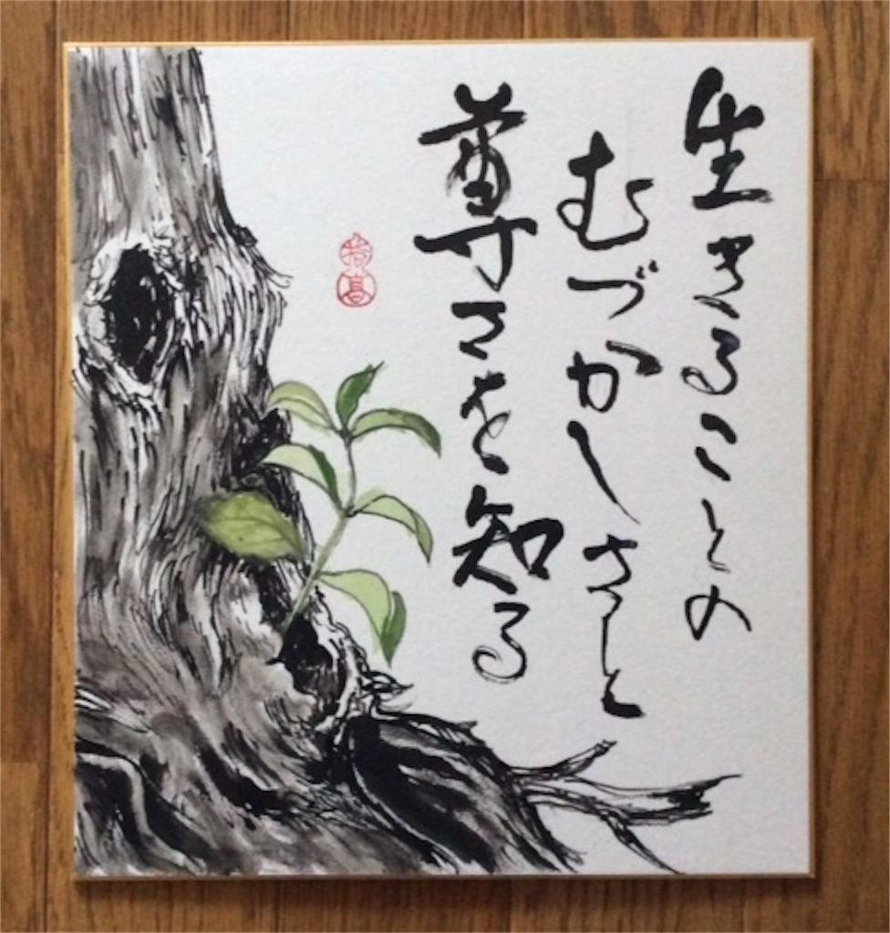 f:id:yubitaka:20180123185036j:image