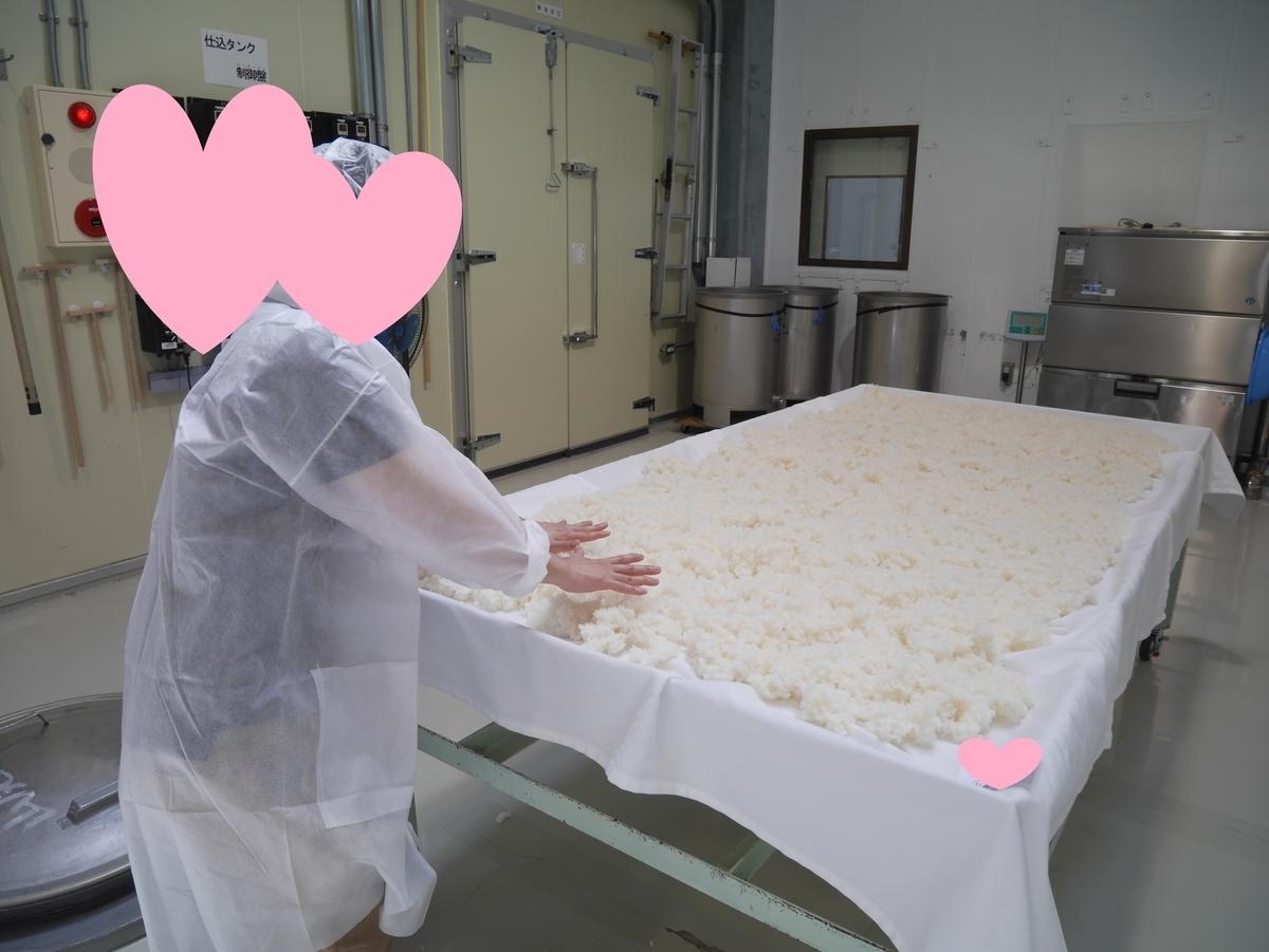 結婚式 両親贈呈品 日本酒 手造り 愛知県 ほうらいせん吟醸工房 放冷作業