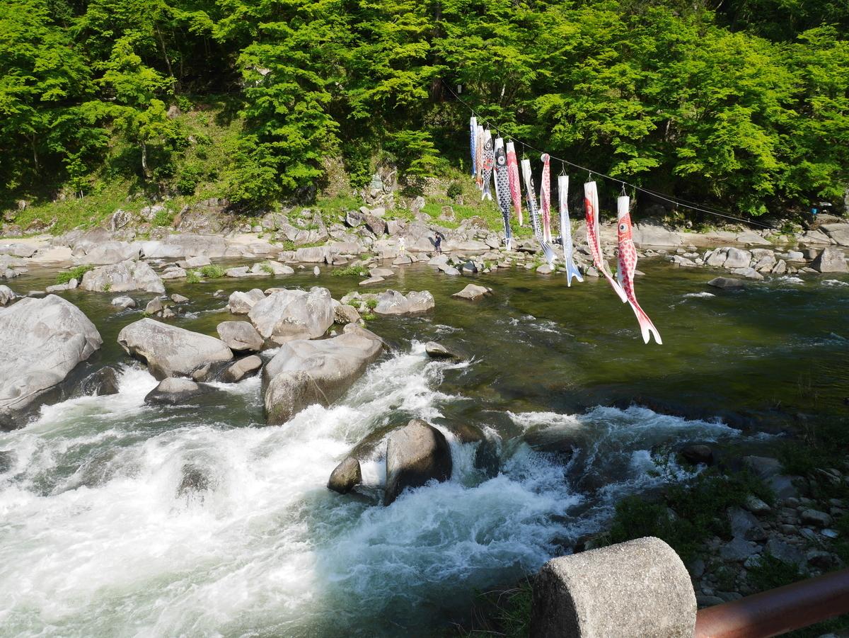 愛知県 観光 香嵐渓 渓流 4月