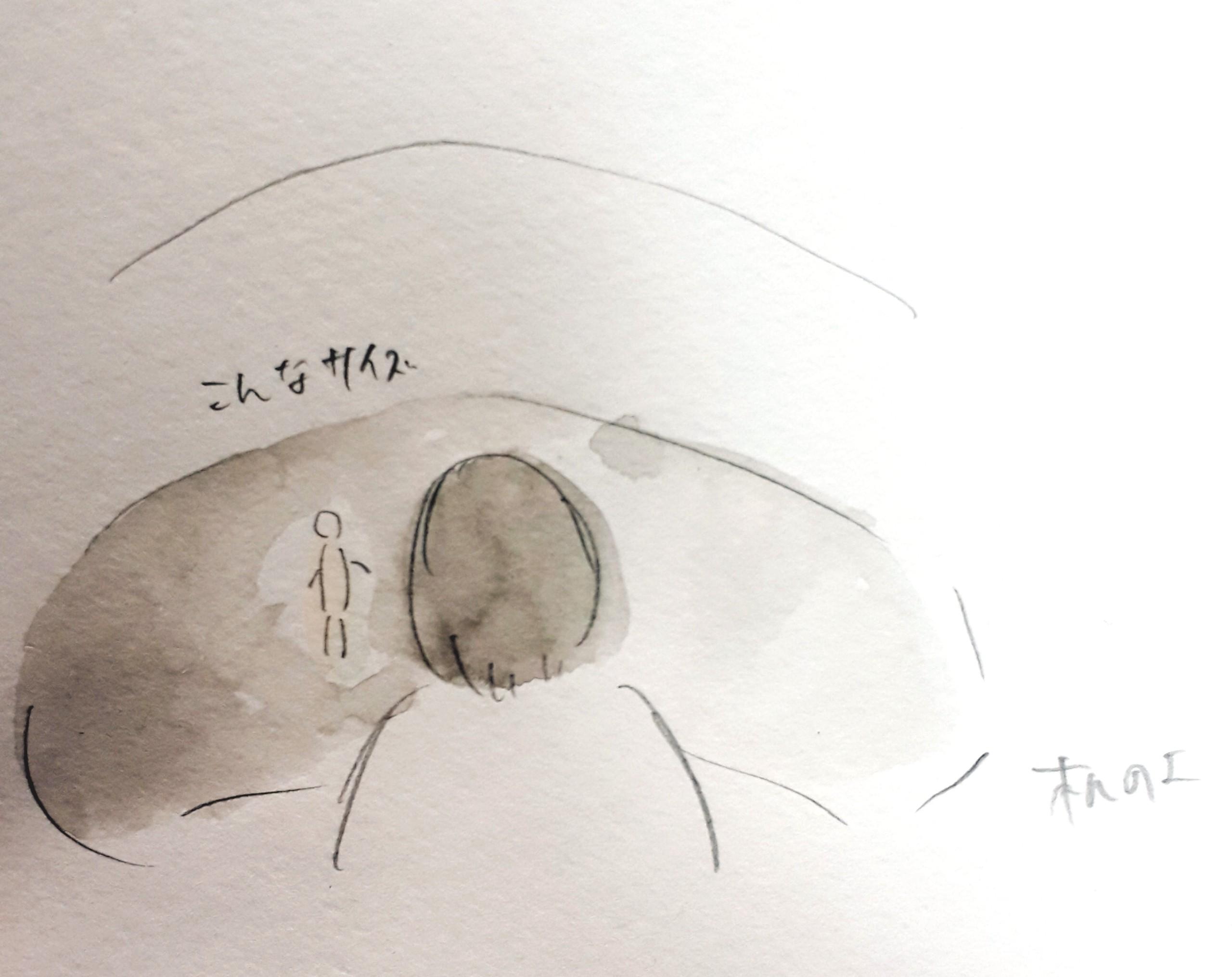 f:id:yucha168:20191217224321j:image