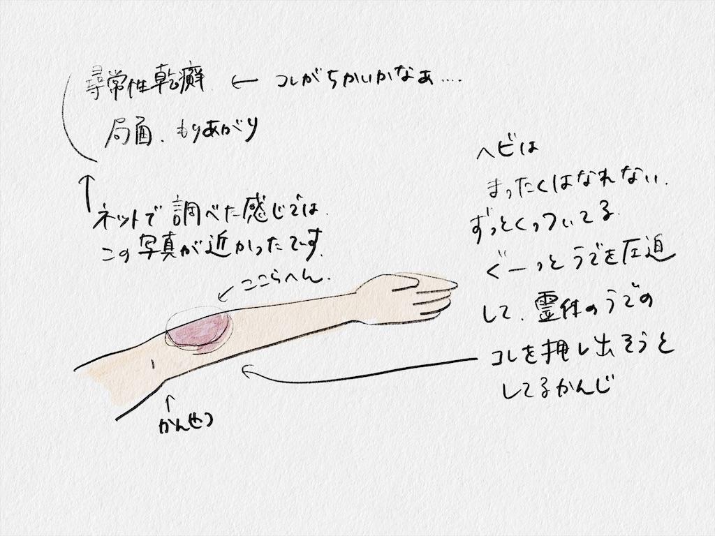 f:id:yucha168:20210523144841j:image