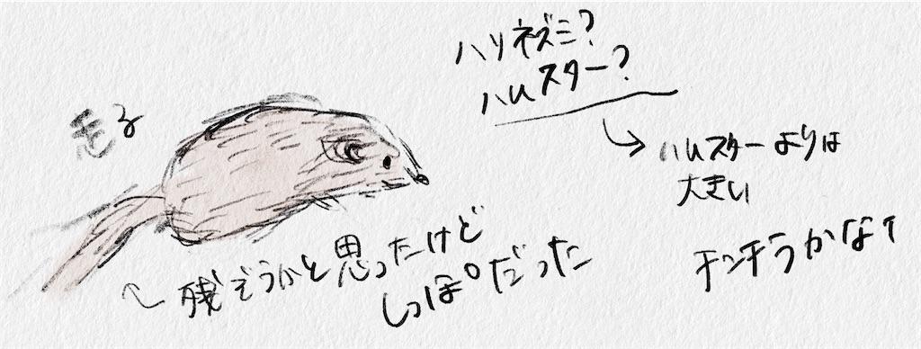 f:id:yucha168:20210923020448j:image