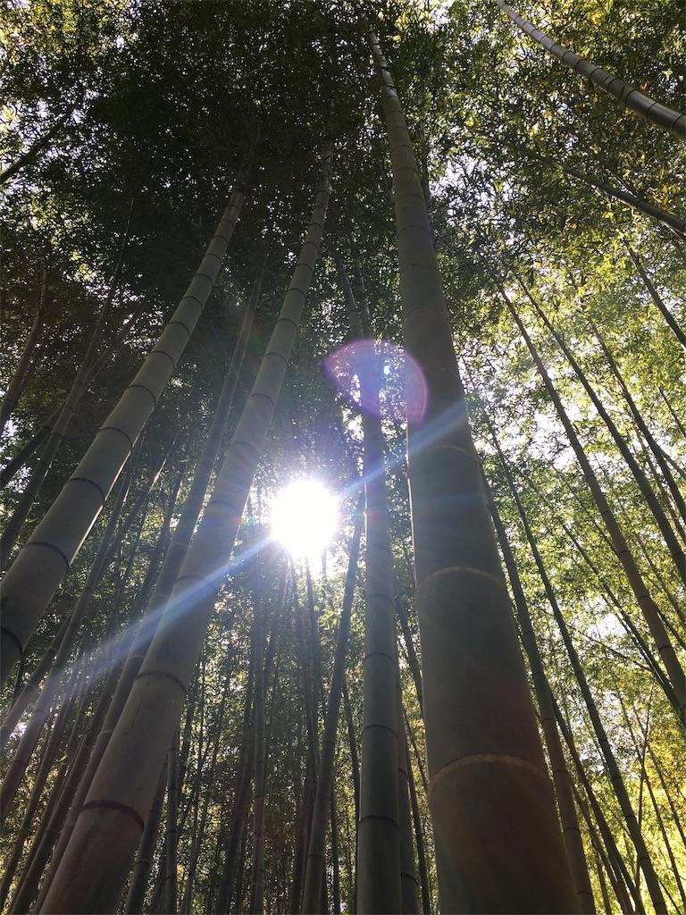 f:id:yudaism:20170508001628j:image