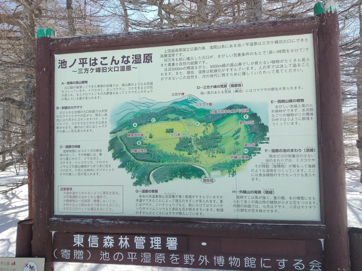 f:id:yueguang:20200211160527j:plain