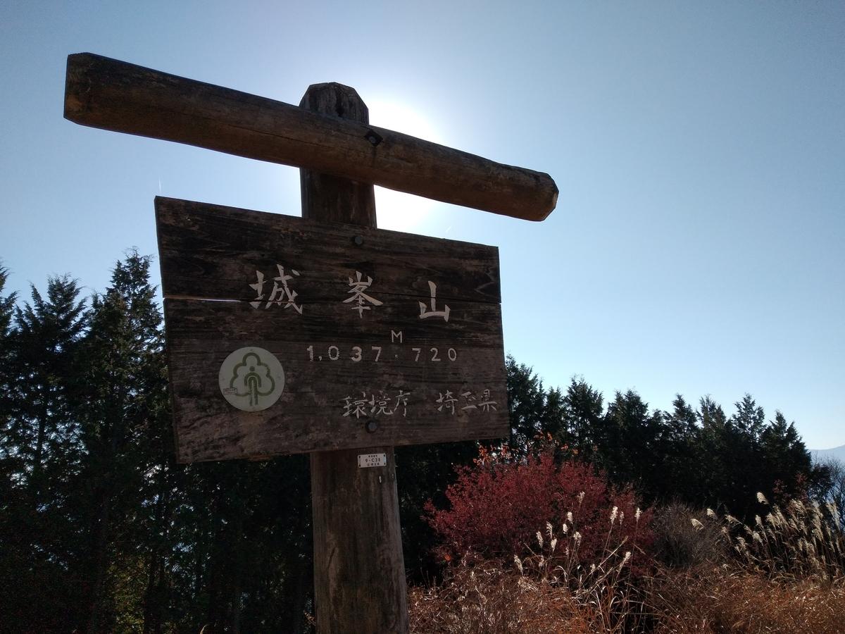 f:id:yueguang:20201214171428j:plain