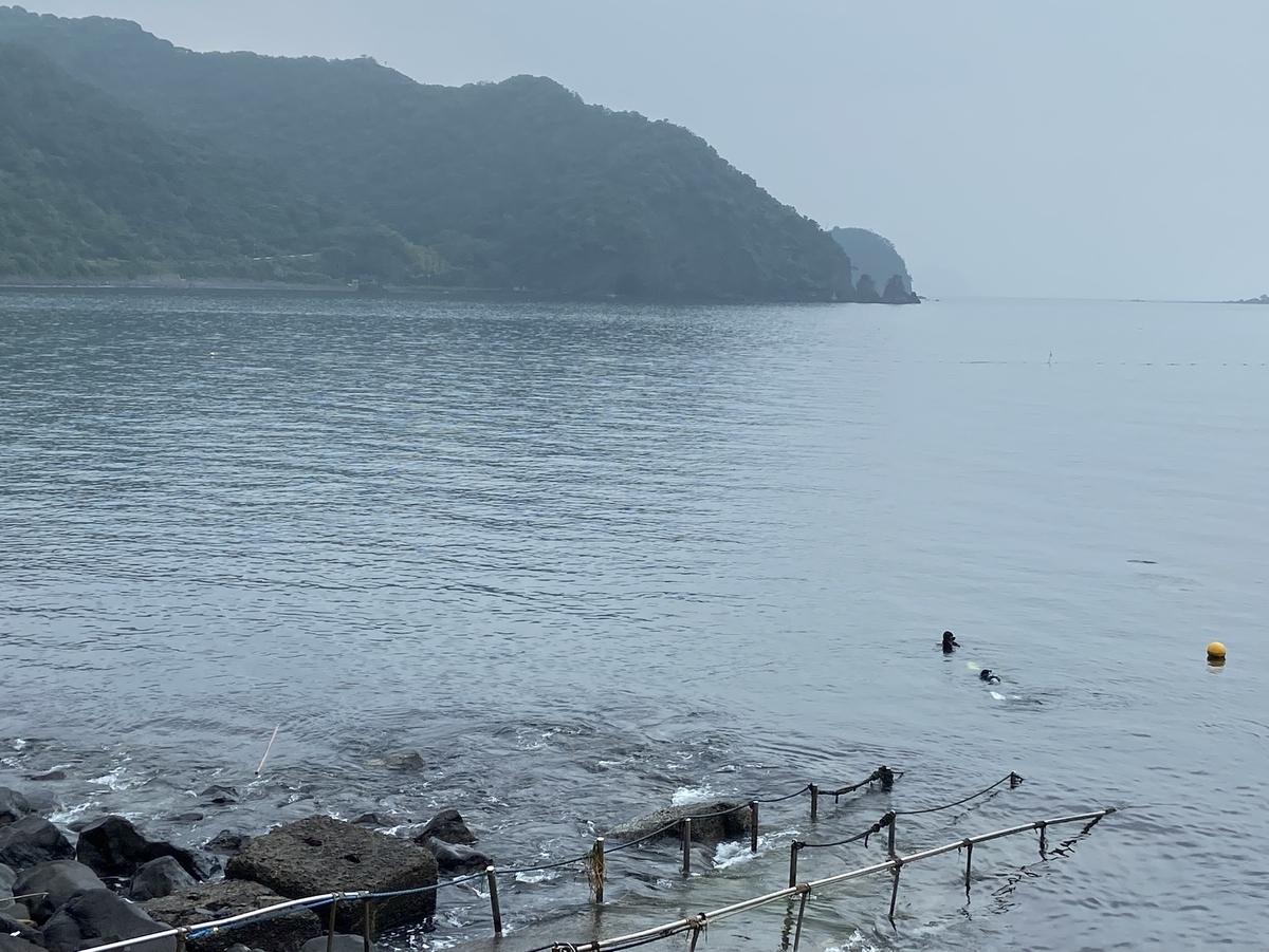 f:id:yueguang:20210717203750j:plain