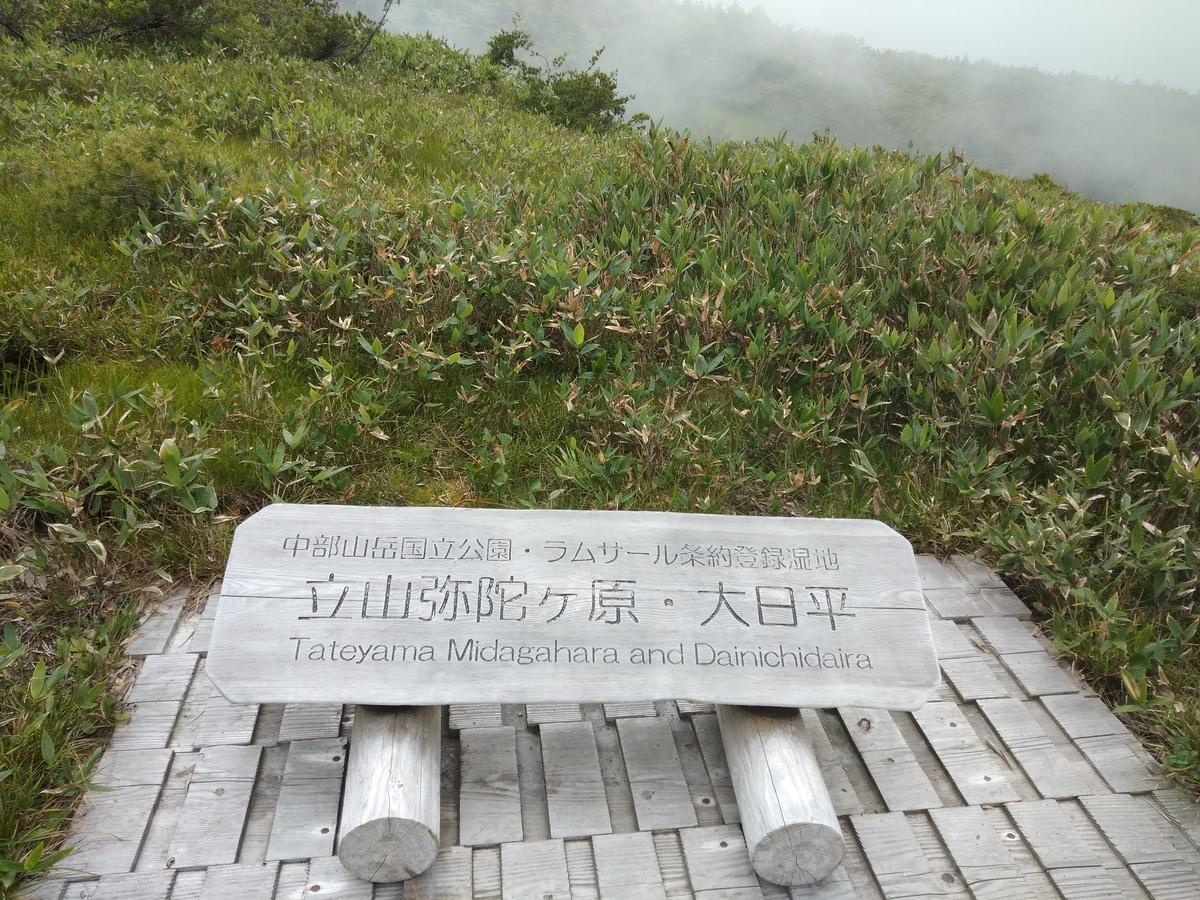 f:id:yueguang:20210809170311j:plain