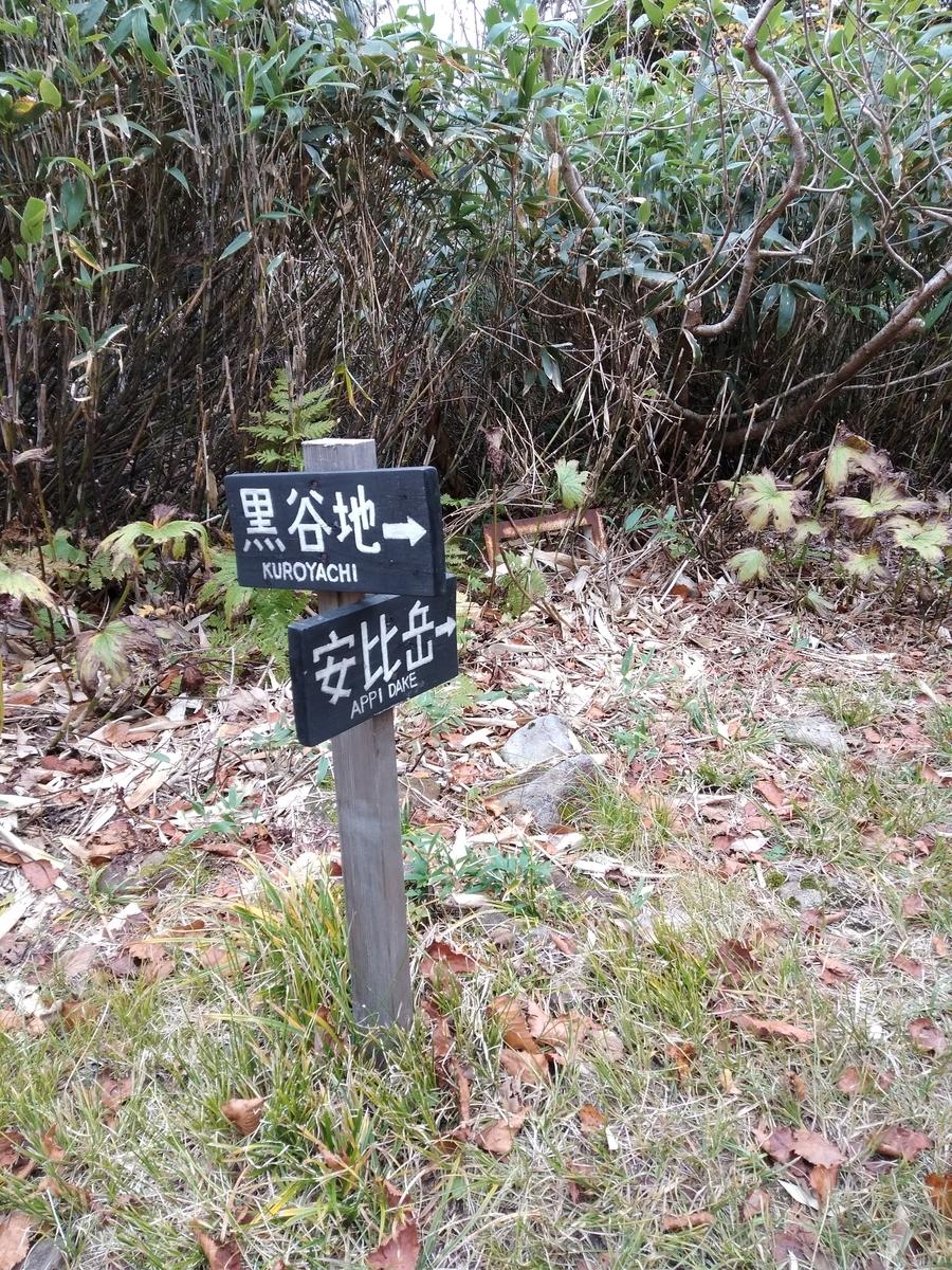 f:id:yueguang:20211007210729j:plain