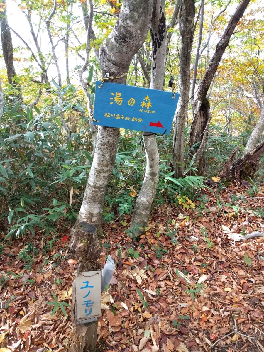f:id:yueguang:20211008193939j:plain
