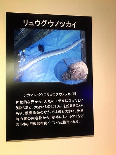 f:id:yuhei2261:20160529162629j:plain