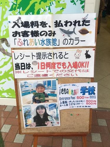 f:id:yuhei2261:20160602223343j:plain