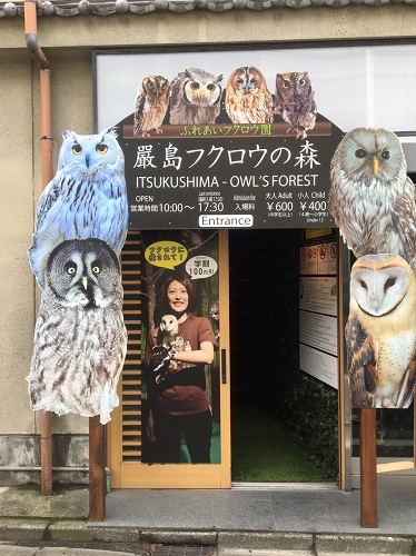 f:id:yuhei2261:20160614160429j:plain