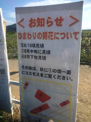 f:id:yuhei2261:20160822133525j:plain