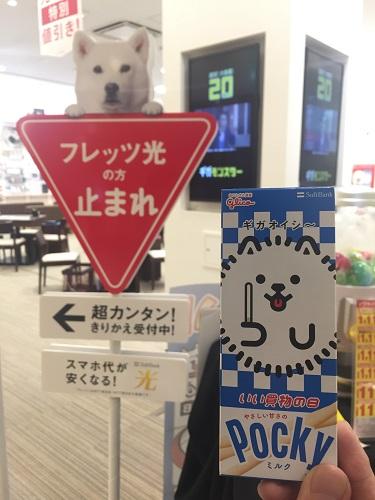 f:id:yuhei2261:20161112113225j:plain