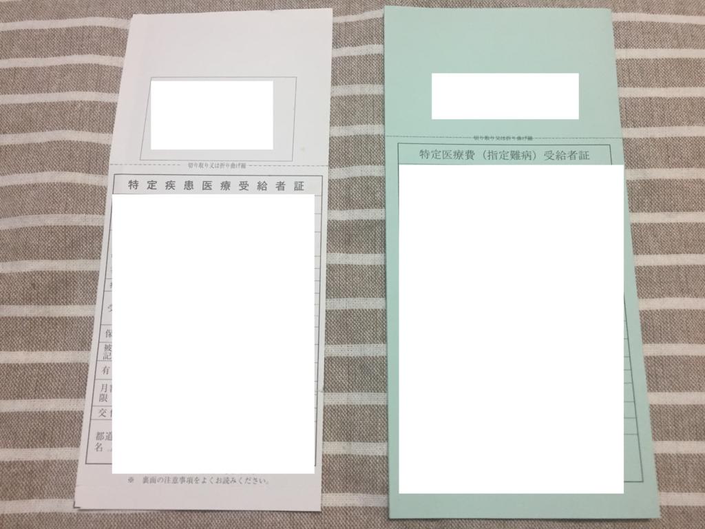 f:id:yuhei2261:20161115183936j:plain