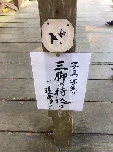 f:id:yuhei2261:20161117171041j:plain