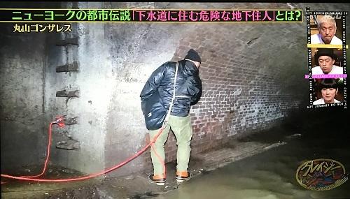 f:id:yuhei2261:20170102020500j:plain