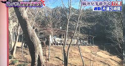 f:id:yuhei2261:20170201145620j:plain