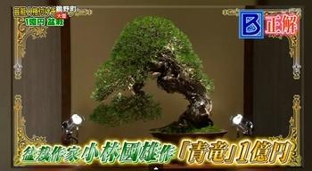 f:id:yuhei2261:20170402104104j:plain