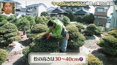 f:id:yuhei2261:20170405112903j:plain