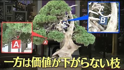 f:id:yuhei2261:20170405113710j:plain