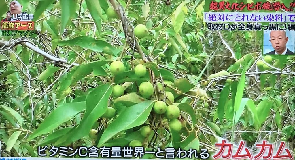 f:id:yuhei2261:20170503173008j:plain