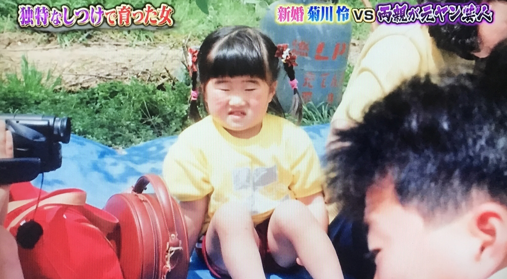 f:id:yuhei2261:20170513141843j:plain