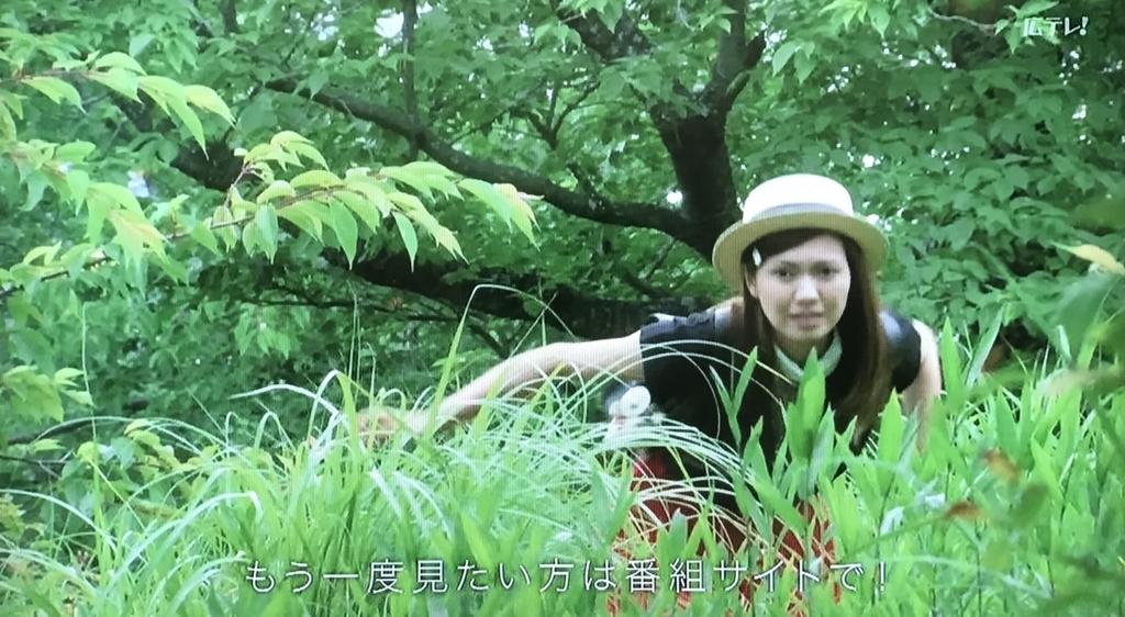 f:id:yuhei2261:20170620152252j:plain
