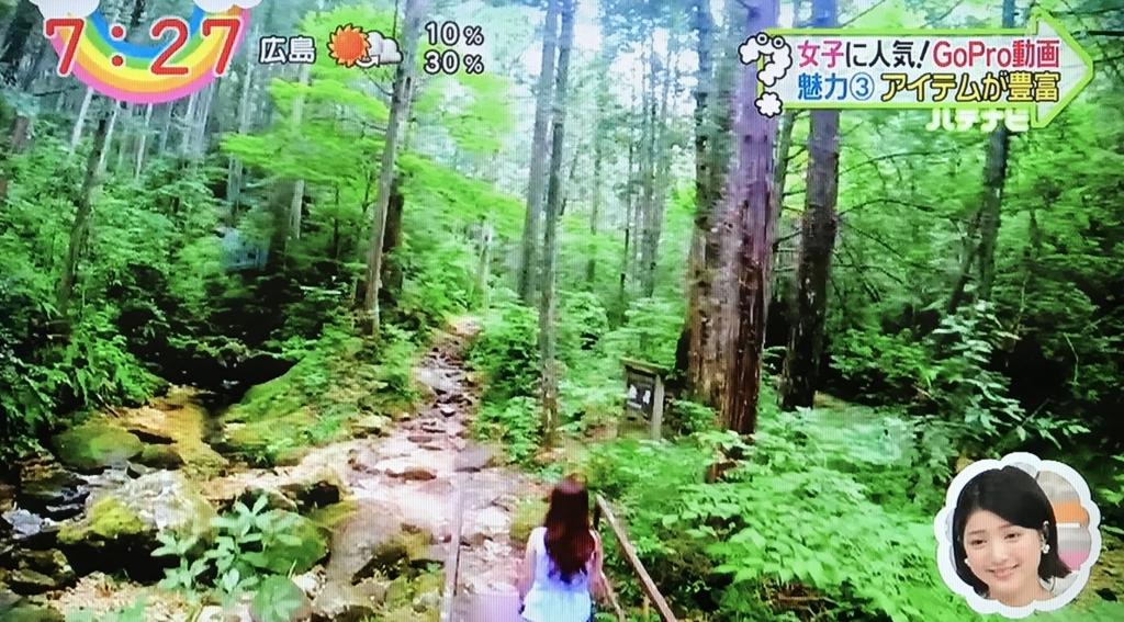f:id:yuhei2261:20170703161455j:plain