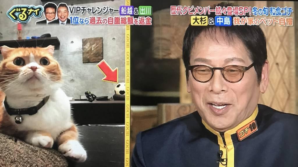 f:id:yuhei2261:20180222195500j:plain